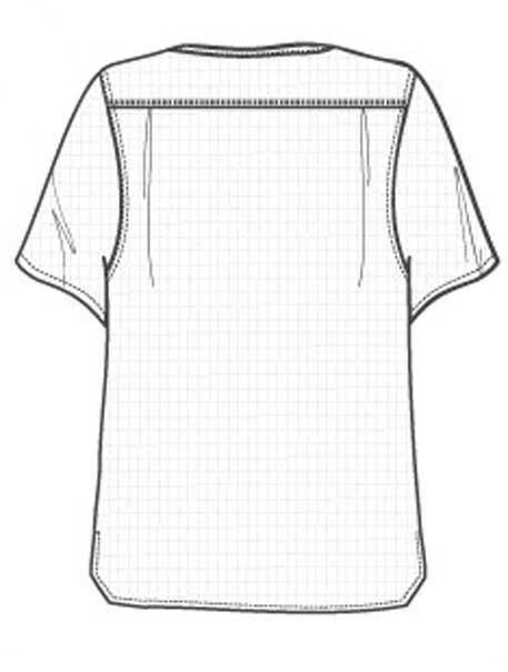 Sketch Back