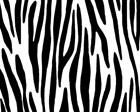 Love To Safari Black