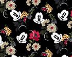 Floralista Mickey
