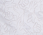 Mickey Hands White